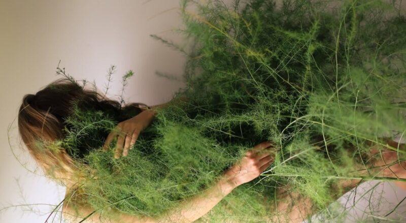 woman in green grass field